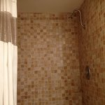 Room #229 shower head