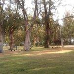 Le jardin où il y a les activités