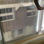 """""""Panorama"""" dalla finestra della camera"""