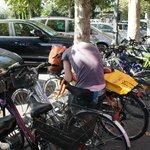 хорошо взять в прокат велосипед