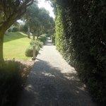 Scented walkway
