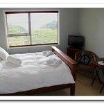 Room Tane
