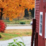 Bishop Farm Bed and Breakfast Foto