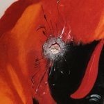 Bullet hole entry in picture