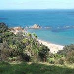 Photo de DOC Waikawau Bay Campsite