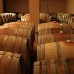 Goumenissa-Pella Wine Route