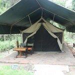Camp en el medio de la naturaleza