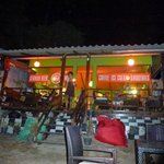 Coffee Gecko vom Strand