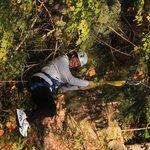 Ziplining through the trees!