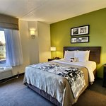 Queen Handicap Guest Room
