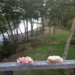 Lobster and Crab on the balcony overlooking the cove