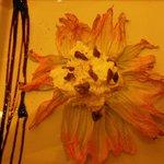 burrata su fiore di zucca