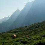 View from Grosse Scheidegg toward Rosenlaui valley
