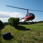 Pick up from the winery on Waiheke