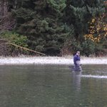 Spey Rod Fishing for large fresh Coho