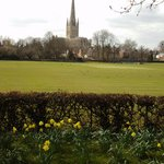 Norwich Cathedral from riverside walk