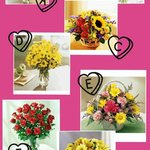 Available flowers