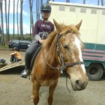 Our first time rider, both horse and rider did very well, good girls