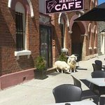 Merino Cafe Gunning