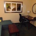 Desk/Living Area