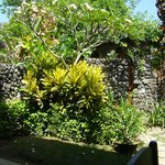 Foto de Sari Sanur Resort