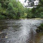 Plodda River