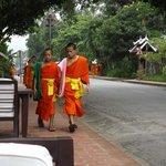 Monjes cruzando frente al hotel.