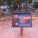 Trail badge marker