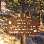 Trail marker at bottom of Navajo Trail