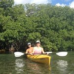 Kayaking thru the mangroves with Lazy Dog Tours