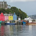 Tobermory is so much more than colorful tourist shops. A truly great harbor and community.