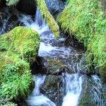 Graceful Falls