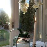 Orchids at our table, the view was beautiful