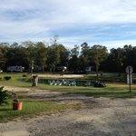 Tent sites behind pond