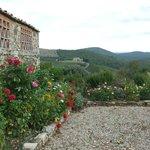 View of garden and hillside