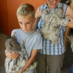 orphaned sloths at Casa Mariposa