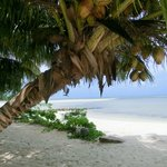 Hotelstrand mit Sandbank