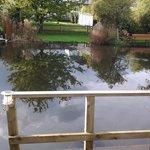 the pontoon alongside the garden