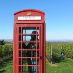 Interesting idea. A working phone in an orchard where you can make a call free to anywhere in N.