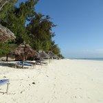Strand liegt 5 Meter vor dem Bungalow