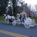 Christmas in Nazareth Carriage rides