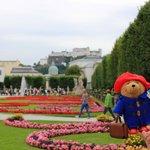 paddington at the palace gardens