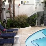 The photo shows the private pool located in the center of the lodge and charming little bird hou