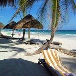 Strandliege oder Hängematte?