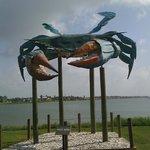 Crab at entrance