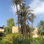 Jardins du Riad