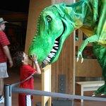 Dino Exhibit at Turtle Bay