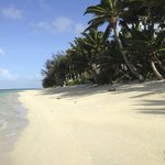 Makayla Palms Beach