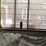 Vistas desde la cama Habitación Verde