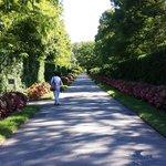 Strolling path